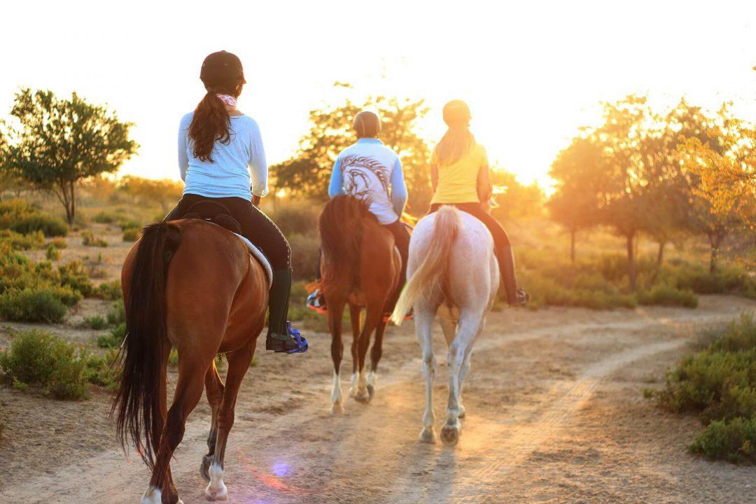 Sprzęt jeździecki - o czym należy pamiętać